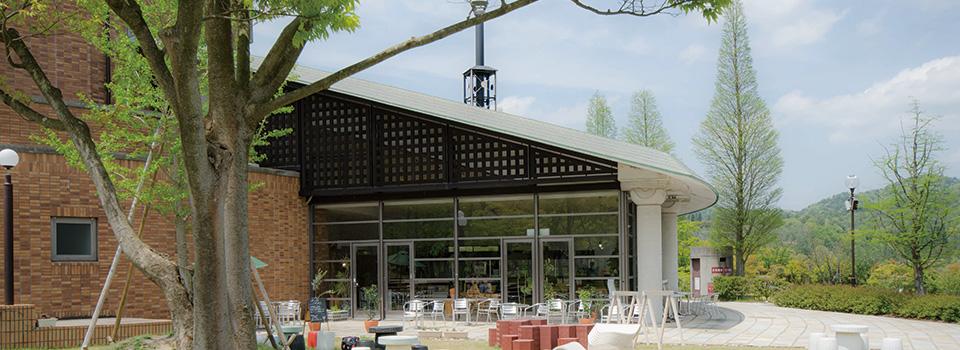 UP cafe|信楽のカフェ_アップカフェ|滋賀県立陶芸の森の中。信号から山を200mUP!!